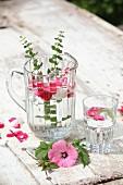 Blütenwasser mit Kräutern und Blütenblättern im Glaskrug und Glas