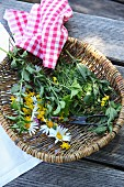 Fresh herbs and flowers in a basket