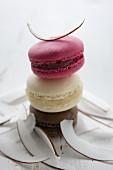 Three macarons: blackcurrant, coconut and chocolate
