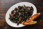 Mussels with parsley and bread toasts on plate on dark wooden background