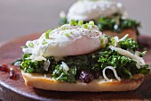 Poached Egg on Toasted Bread with Kale, Cranberries and Shredded Cheese