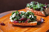 Toasted Bread with Kale, Cranberries and Shredded Cheese Waiting for Poached Egg