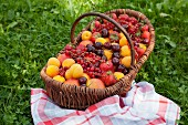 Various summer fruits in a basket