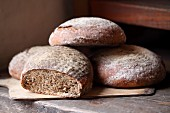 Several wood oven baked breads