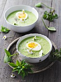 Wild herb soup with parsnips and a soft-boiled egg