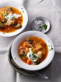 Vegetarian sauerkraut and solyanka (spicy east European soup) with smoked tofu