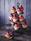 Brombeer-Cupcakes mit Pistazienbiskuit auf Etagere