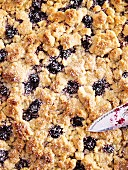 Blueberry streusel cake (close up)