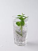 Chia Fresca with fresh mint