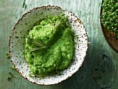Pea puree with cress