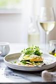 Caprese-Salat mit Gurken, Melone, Rucola und Portulak