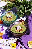 Herb soup garnished with croutons and violet flowers