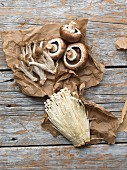 Various fresh mushrooms on paper and a wooden background