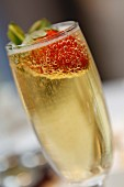 Champagner-Glas mit Erdbeere (Nahaufnahme)