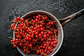 Wet red currants in a vintage collander on black slate board