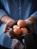 Hände halten frische Eier mit Hühnerfeder