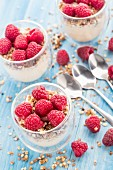 Breakfast with muesli, yogurt and fresh raspberries