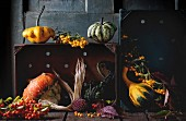 Assortment of different edible and decorative pumpkins and autumn berries in wooden box