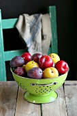 Different kinds of plum in enamel colander