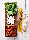 Italian flag colors with Green basil, white mozzarella, red tomatoes, parmesan and spaghetti
