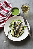 Two fillets of grilled mackerel fish on a plate with mashed potatoes and salsa verde