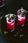 Cranberry Rum Punch mit Minze in hohen Gläsern