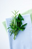 Rosemary, sage and parsley on a blue and white checked napkin