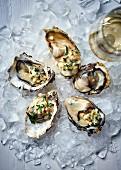 Austern mit Champagner-Essig, Zitrone, Pfefferminze und Meerrettich