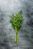 Bunch of dill stems tied with string on a grey stone surface