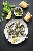 Grilled sardine with salsa verde on a plate