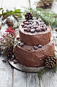 Christmas cake with cranberry and chocolate frosting