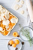 Unbaked apricot pie
