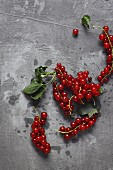 Redcurrants on a stone background
