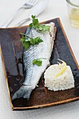Microwaved sea bass with lemon risotto