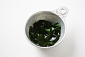 Wakame Seaweed after it has been hydrated in water for a few mintues