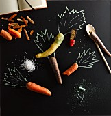 Various carrots with an illustration of carrot tops