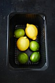 Limes and lemons in a tray