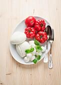 Mozzarella-Käse mit Tomaten und Basilikum