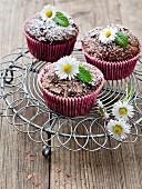 Schokoladenmuffins mit Gänseblümchen