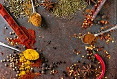 Spicy background with assortment of different hot chili and allspice peppers and mix of other spices