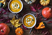 Pumpkin and sweet potatoes soup in bowls topped with cream and fresh dill, Autumn leaves on a rustic wooden table