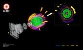 ALICE 13 TeV proton collisions, CERN graphic