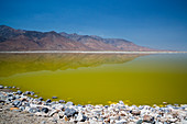 Owens Lake rejuvenation, USA