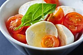 Mozzarella and tomato salad with basil and olive oil
