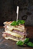 Whole grain grilled sandwich bread with melting hot cheese, ham and basil over dark rusty iron textured background