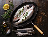 Raw uncooked Trout fish with spices and herbs on pan on dark wooden background