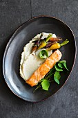 Celeriac puree with roasted carrots and salmon