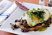 Wild Mushroom Bruschetta (hen of the woods, taleggio, fried egg)