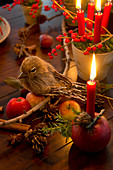 Festive arrangement of bird ornament of larch branch, moss and candles in terracotta pot and candle in apple