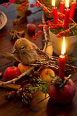 Dekovogel auf Lärchenzweig, Tontöpfchen mit Moos und Kerzen und Apfel mit Kerze als Weihnachtsdeko